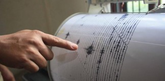 cutremure recente
