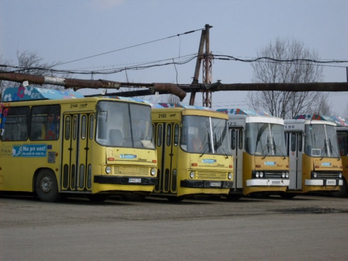 autobuze tce