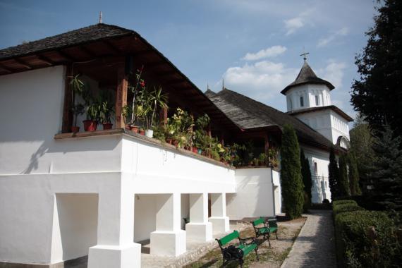 manastire cotmeana