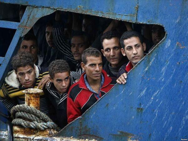 imigranti tren800 w700 h800 q90