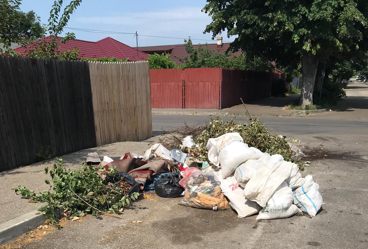 FOTO: Ploiești, orașul gunoaielor. E dezastru în zona de sud!
